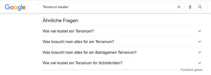 Google Nutzerfragen