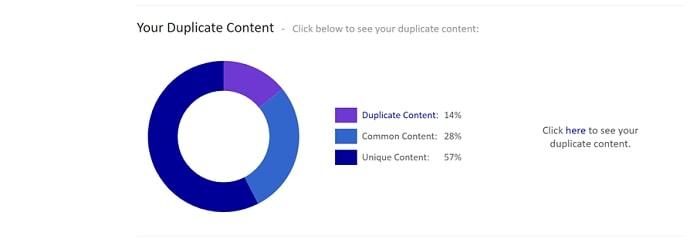 duplicate content check