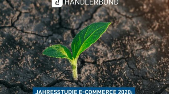 e commerce studie 2020