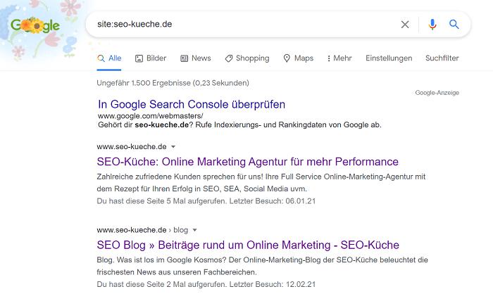 index site check google
