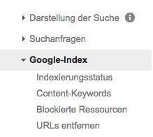 WMT Google-Index