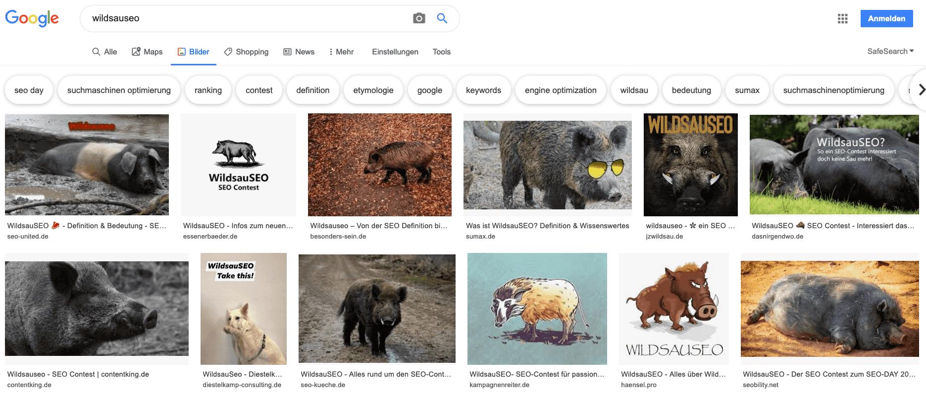 Dieses Bild zeigt Ergebnisse der Google Bildersuche zum WildsauSEO Contest
